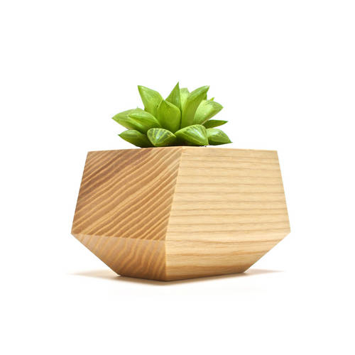 Boxcar Single Ash - Revolution Design House