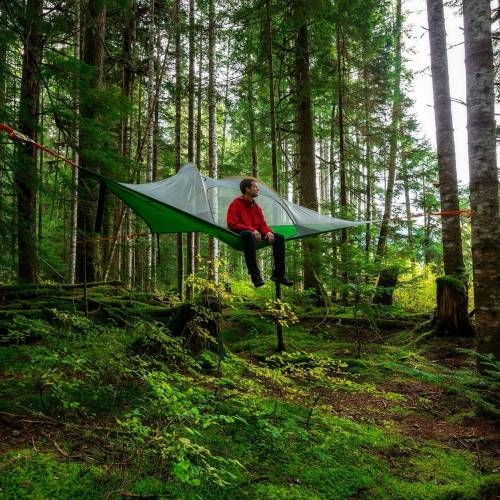 Stingray Tree Tent | Tentsile