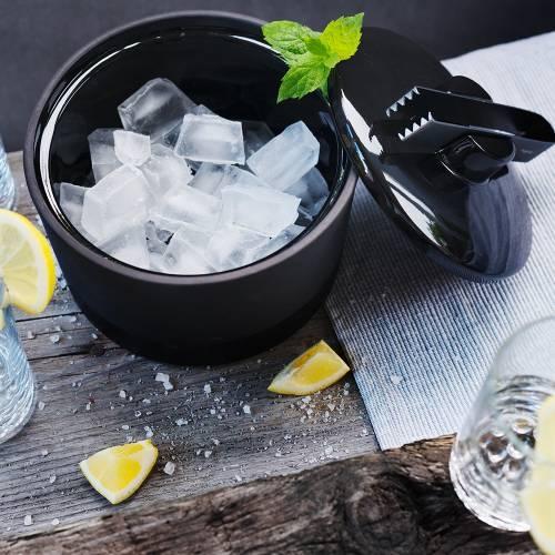 Ice Bucket   Magisso